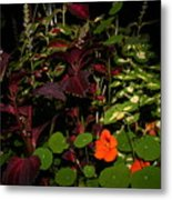 Night Flower's Metal Print