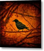 Night Guard Metal Print