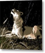 Night Lioness Metal Print
