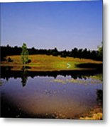 Night Scape Pond Metal Print