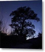 night sky and trees in Molino Canyon Mount Lemmon AZ Metal Print