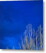 Night Sky Metal Print by Steve Gadomski