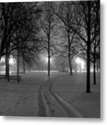 Night Tracks Metal Print