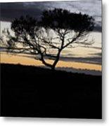 Night Tree Metal Print