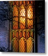 Night Worship Metal Print