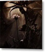 Nightflower Metal Print