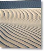 Nipomo Dunes Metal Print by Ron Hoggard