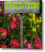 No Cutting Sign In Garden Metal Print