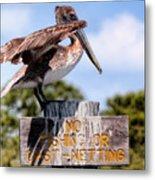No Fishing Baby Pelican Metal Print