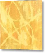 Wind And Sand Metal Print