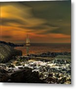 Nocturnal Tranquility Metal Print