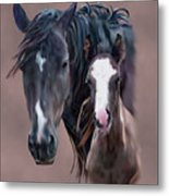 Nokota Mare And Foal Metal Print