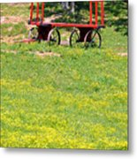 None Of Your Red Wagon Metal Print