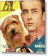 Norfolk Terrier Art Canvas Print - East Of Eden Movie Poster Metal Print