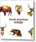 North American Wildlife Metal Print