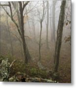 North Carolina Foggy Mountain  Metal Print