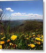 North Carolina High Country Metal Print