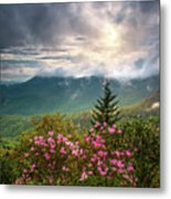North Carolina Spring Flowers Blue Ridge Parkway Scenic Landscape Asheville Nc Metal Print