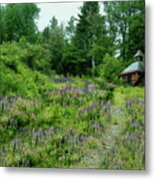 North Country Nod To Monet Metal Print