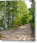 North Country Trail In Pictured Rocks National Lakeshore-michigan  Metal Print