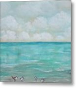 North Florida Sand Pipers Metal Print