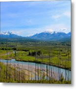 North Fork Flathead River Metal Print