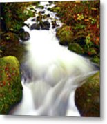 North Fork Of Wallace Metal Print