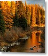 North Fork Yaak River Fall Colors #1 Metal Print