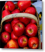 North Ga. Apples Metal Print