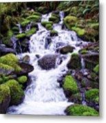 North Umpqua Wild And Scenic River Metal Print