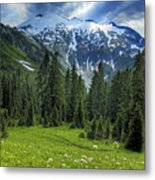 Northern Cascades In Washington State    Mount Ruth Metal Print by Brendan Reals