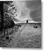 Northern Ireland 35 Metal Print