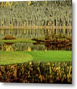 Northern Lake Metal Print