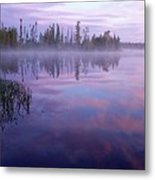 Northern Morning Beauty Metal Print