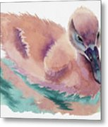 Not An Ugly Duckling Metal Print