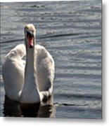 Not Another Swan Metal Print