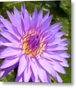 Purple Smiles Metal Print