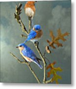 Nothing But Bluebirds Metal Print