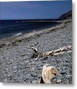 Nova Scotia Pebble Beach Metal Print