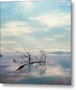 November On A Bavarian Lake Metal Print by Helmut Rottler