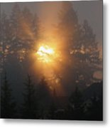 November Sunrise - 1 Metal Print