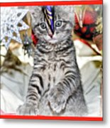 Now Where Did That Ornament Go I Just Saw It A Second Ago Metal Print
