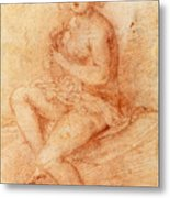 Nude Seated Woman Playing A Lute Metal Print