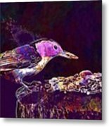 Nuthatch White Breasted Nuthatch  Metal Print