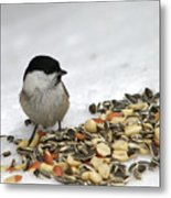 Nuts Said The Willow Metal Print