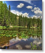 Nymph Lake 2 Metal Print