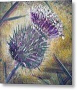 O' Flower Of Scotland Metal Print