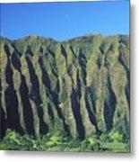 Oahu Rugged And Lush Metal Print
