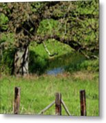 Oak Creek Guards Metal Print