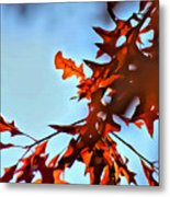 Oak Leaves 2 Metal Print